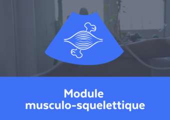 Module musculo-squelettique 10h / e-learning + webconf