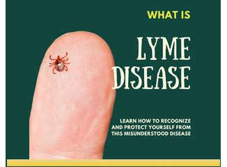What is Lyme disease?