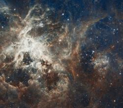 30 doradus  tarantula nebula