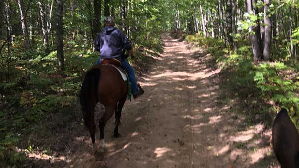 Big Oaks equestrian trail