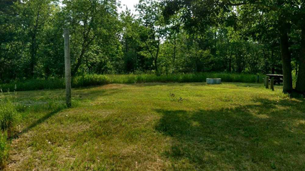Grass covered campsite at Elk Hill Equestrian State Forest & Trail Camp