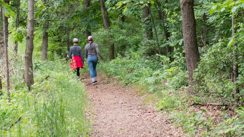 Trail at Brighton Recreation Area