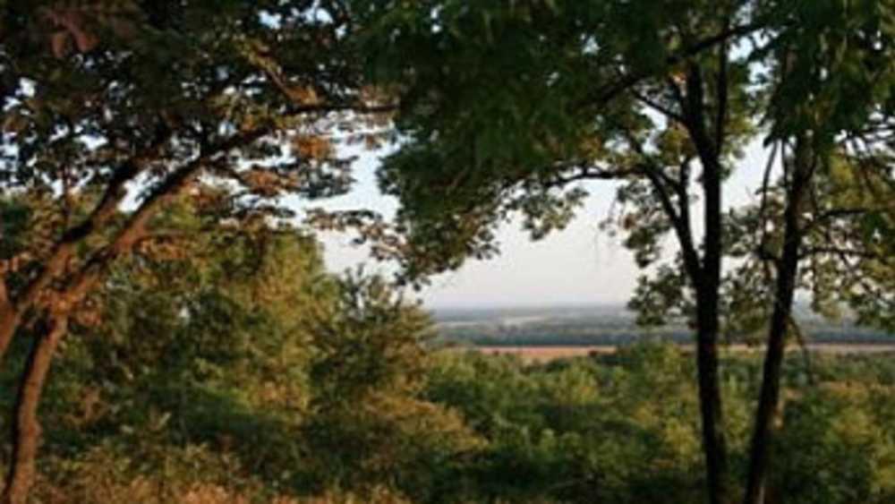 Photo Courtesy Pere Marquette State Forest