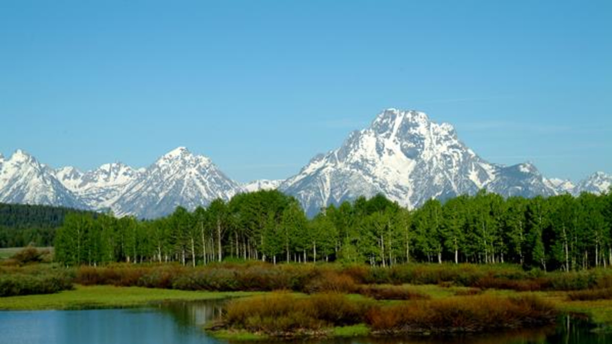 Grand Teton National Park Moose Travel Wyoming That S Wy