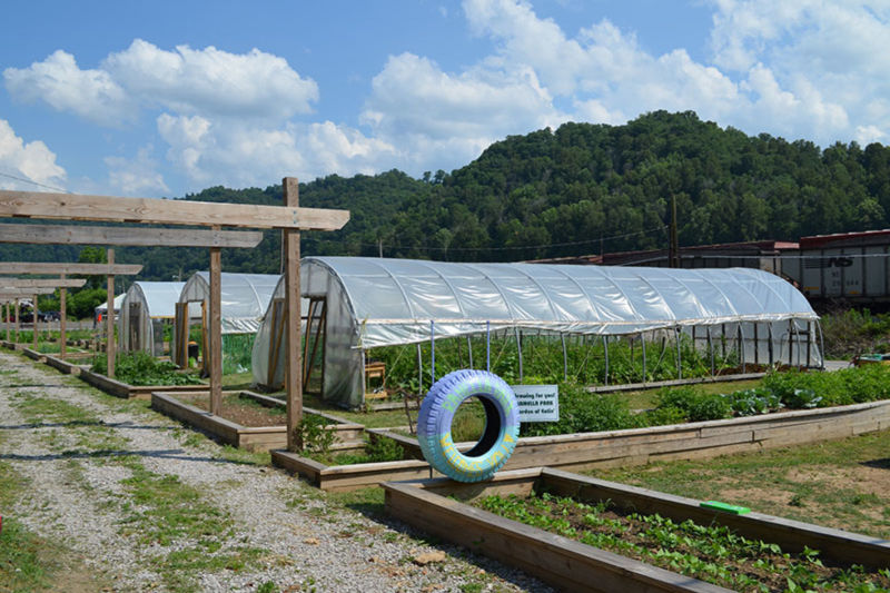 Williamson Community Garden - Photo