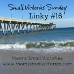 rp_small-victories-sunday-16-250x250.jpg