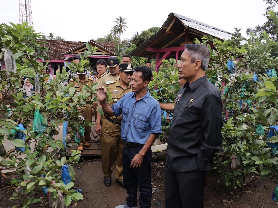Pjs. Gubernur Didik Terkesan Dengan Desa Agrowisata Sumberrejo Tanggamus