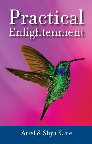 Award-Winning Children's book — Practical Enlightenment