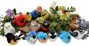 Award-Winning Children's book — Wild Republic Audubon Birds