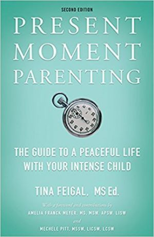 Award-Winning Children's book — Present Moment Parenting