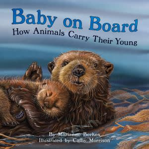 Award-Winning Children's book — Baby on Board:
