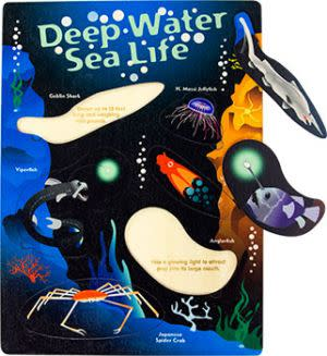 Award-Winning Children's book — Deep Water Sea Life Lift and Learn Puzzle Made in the USA