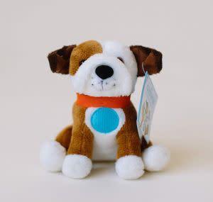 Award-Winning Children's book — United Healthcare Children's Foundation Mini (5 inch) Chewie