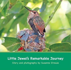 Award-Winning Children's book — Little Jewel's Remarkable Journey