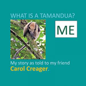 Award-Winning Children's book — What Is A Tamandua?