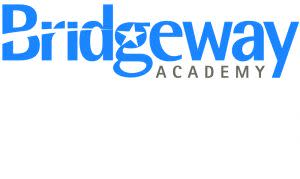 Award-Winning Children's book — Bridgeway Academy