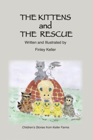 Award-Winning Children's book — The Kittens and The Rescue