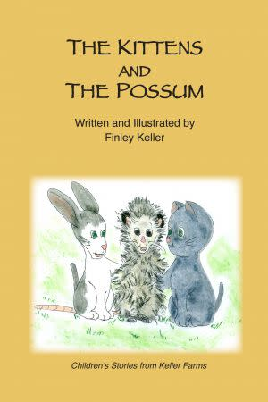 Award-Winning Children's book — The Kittens and The Possum