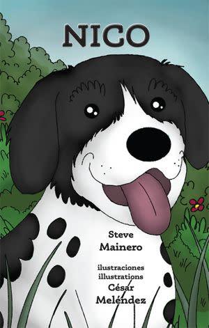 Award-Winning Children's book — Nico