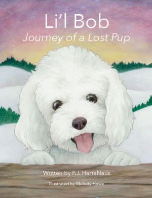 Award-Winning Children's book — Li'l Bob