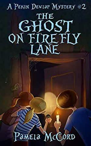 Award-Winning Children's book — The Ghost on Firefly Lane