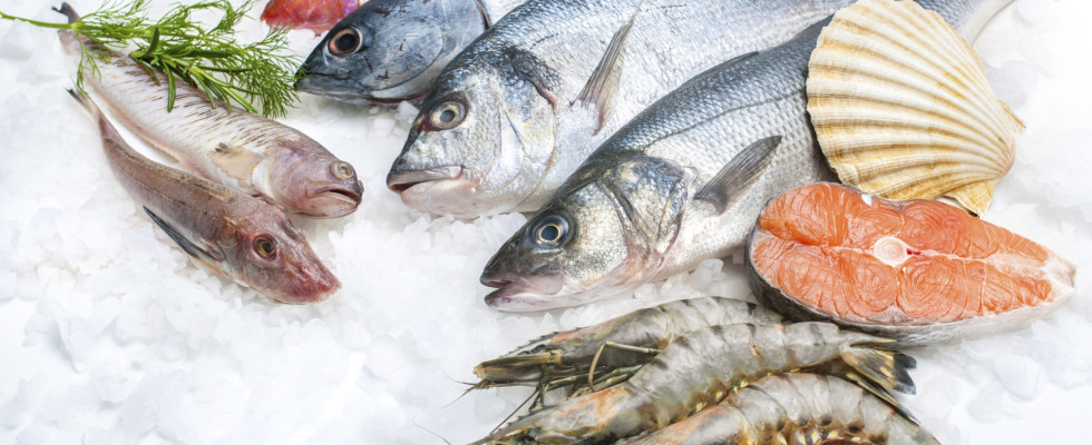 The safest and green fish to eat from the sea for Safest fish to eat