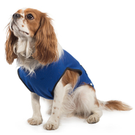 Ancol Blue Dog Cooling Vest