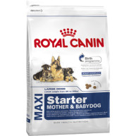 Royal Canin Maxi Starter Mother & Babydog Dog Food