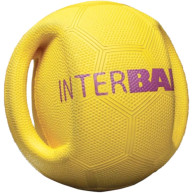 Interball Interactive Dog Ball Toy for throw and fetch