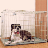 Rosewood Options Two Door Dog Home Crate
