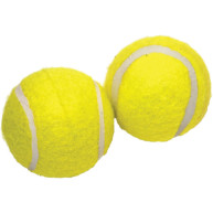 Rosewood Jolly Doggy Squeaky Tennis Balls 2 Pack