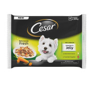 Cesar Pouch Deliciously Fresh Selection In Jelly Adult Dog Food