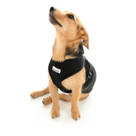 Doodlebone Mesh Dog Harness