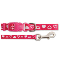 Small Bite Heart Collar & Lead Puppy Set Raspberry