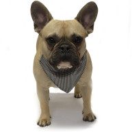 Dapper Pets Houndstooth Dogs Indiana Bandana