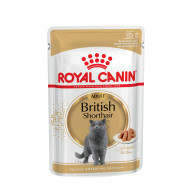 Royal Canin British Shorthair in Gravy Adult Cat Food 85g x 12