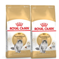 Royal Canin Breed Nutrition Norwegian Forest Adult Cat Food