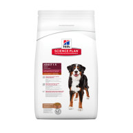 Hills Science Plan Lamb Large Breed Adult Dog Food