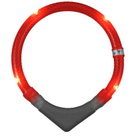 Leuchtie Plus LED Red Dog Collar 35cm