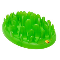 Company of Animals Northmate Green Slow Feeder Standard