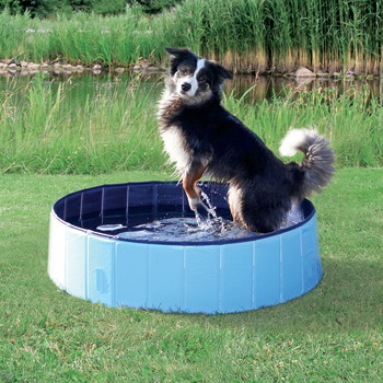 Trixie Dog Pool