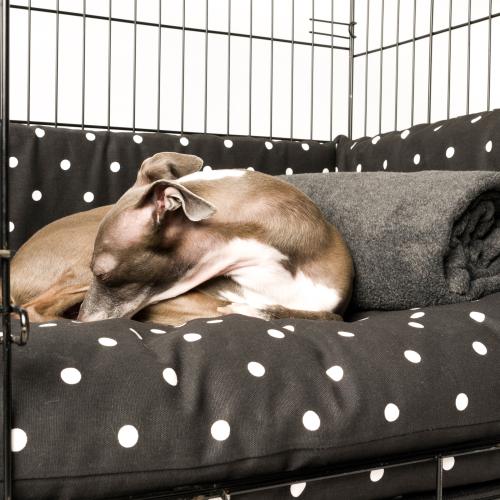 Charley Chau Crate Mattress & Bed Bumper Set Dotty Charcoal - Medium
