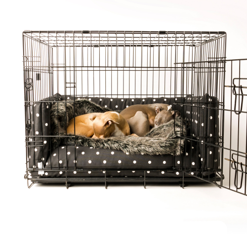Charley Chau Crate Mattress & Bed Bumper Set