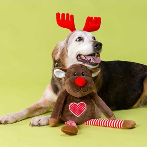 House of Paws 2 in 1 Reindeer & Antlers Christmas Dog Toy