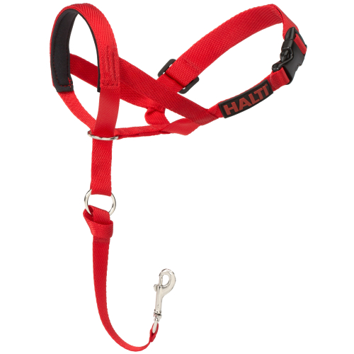 Halti Dog Headcollar Red