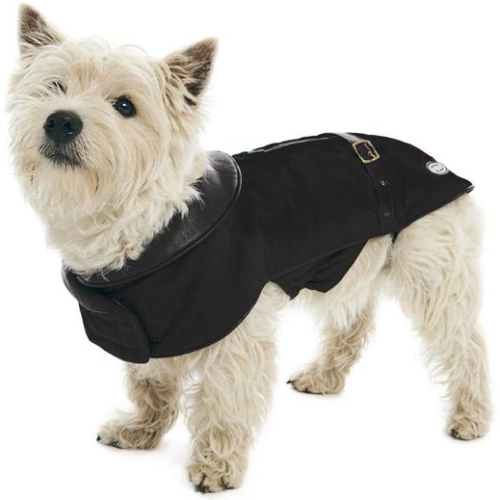 Buster City Dog Coat Black Large