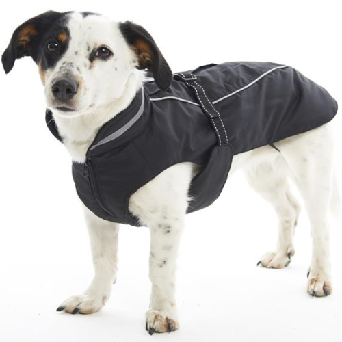 Buster Winter Jacket Dog Coat Black Pepper