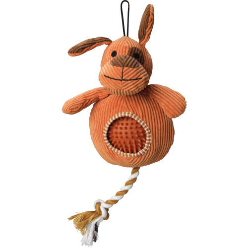 House of Paws Dog & Spikey Ball Dog Toy