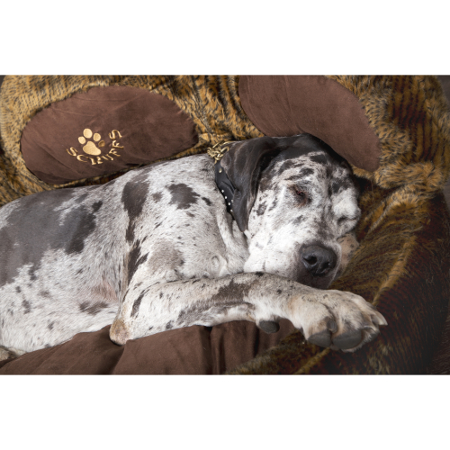 Scruffs Grizzly Bear Dog Bed