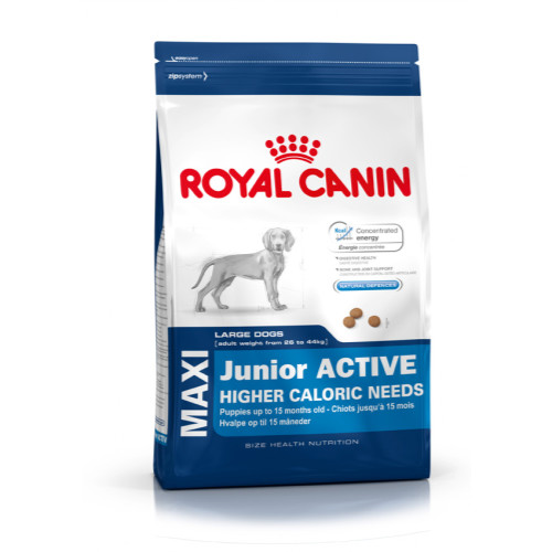 Royal Canin Maxi Junior Active Dog Food